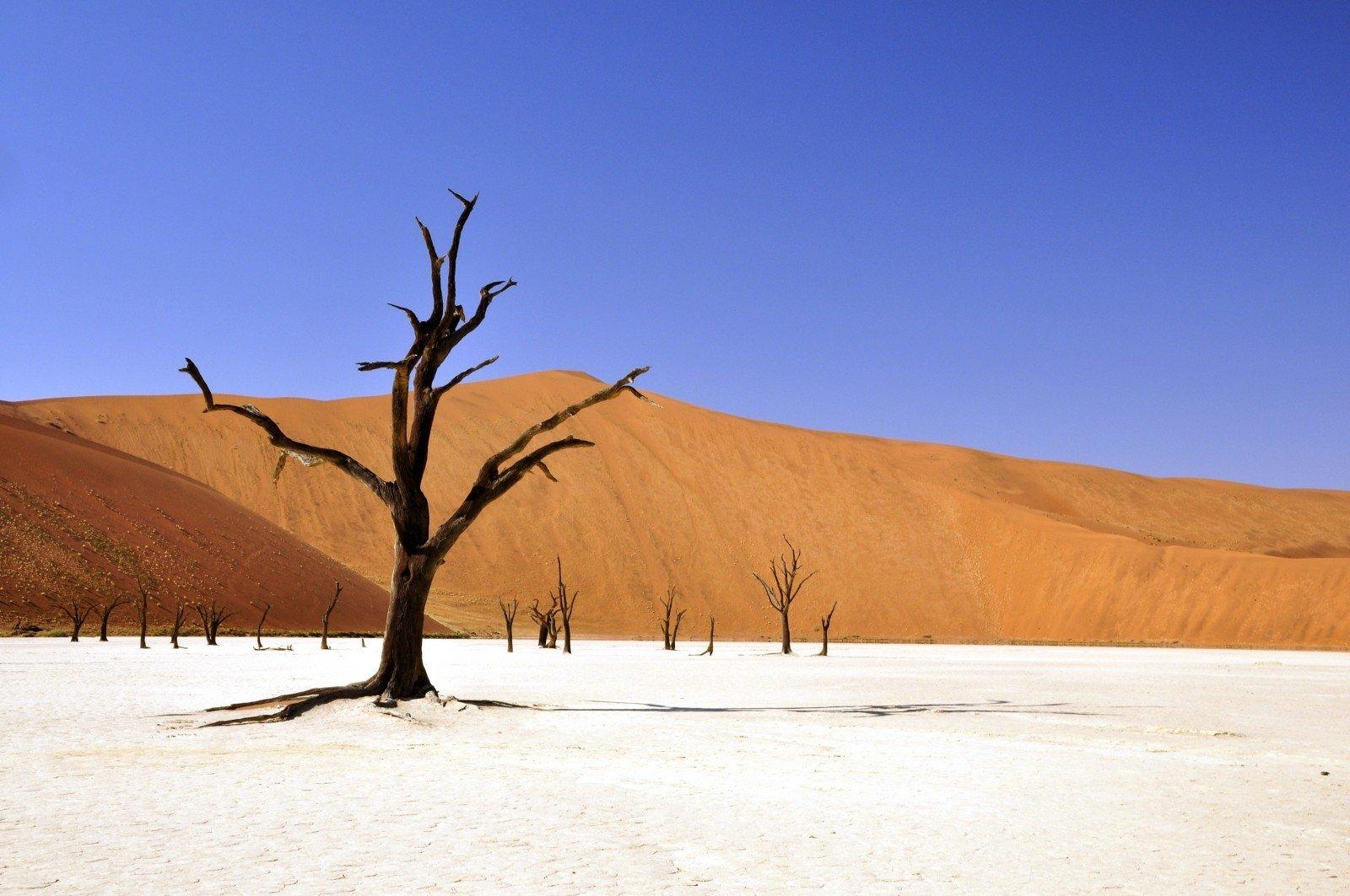Desert in Namibia